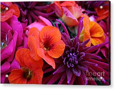 Acrylic Print featuring the photograph Dewy Blooms by Jeanette French