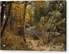 Frosty Fall  Morning Acrylic Print
