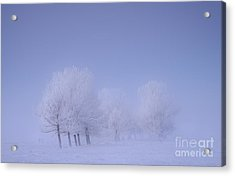 Frosty Friends Acrylic Print