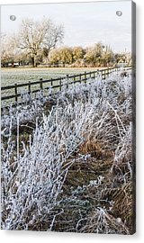 Acrylic Print featuring the photograph Frosty Landscape by David Isaacson