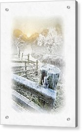 Frosty Morning Acrylic Print by Mo T