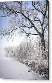 Acrylic Print featuring the photograph Frosty Shoreline by Kari Yearous