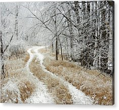 Acrylic Print featuring the photograph Frosty Trail 2 by Penny Meyers