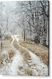 Acrylic Print featuring the photograph Frosty Trail by Penny Meyers