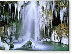 Frozen Beauty Aka Ice Is Nice Xi Acrylic Print by Bijan Pirnia