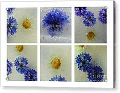 Frozen Blue Acrylic Print