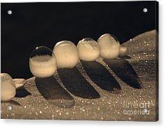 Frozen Bubbles Acrylic Print