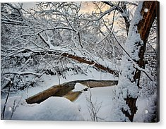Frozen Creek Acrylic Print by Sebastian Musial