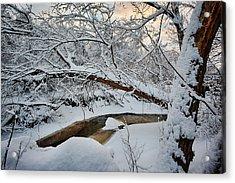 Frozen Creek Acrylic Print by Sebastian Musial