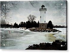 Frozen Entry 3 - De Acrylic Print by Janice Adomeit