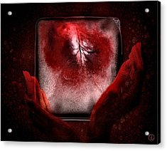 Frozen Heart Acrylic Print by Gun Legler