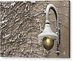 Frozen Illumination Acrylic Print