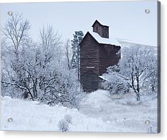 Frozen In Time Acrylic Print by Darren  White