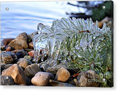 Frozen In Time Acrylic Print by Leone Lund