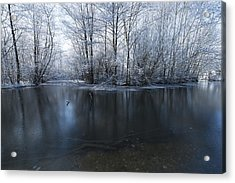 Frozen In Time Acrylic Print by Svetlana Sewell