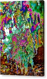 Acrylic Print featuring the digital art Frozen Juniper by Mae Wertz