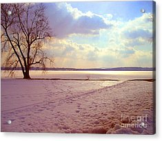 Frozen Lake II Acrylic Print by Silvie Kendall