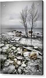 Frozen Lake Acrylic Print by Vedran Vidak