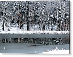 Acrylic Print featuring the photograph Frozen by Linda Segerson