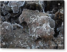 Acrylic Print featuring the photograph Frozen Mud by Marianne Jensen