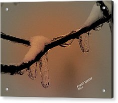 Frozen Rain Acrylic Print