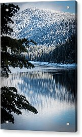 Frozen Reflection Acrylic Print by Jan Davies