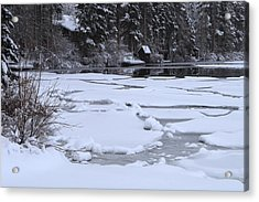 Acrylic Print featuring the photograph Frozen Silence  by Duncan Selby