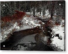 Frozen Stream II Acrylic Print
