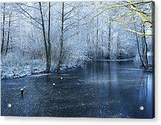 Frozen Acrylic Print by Svetlana Sewell