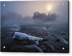 Frozen Acrylic Print by Tom Meier