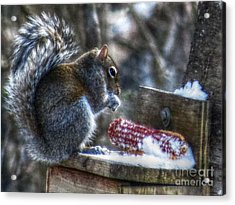 Frozen Veggies Acrylic Print by Missy Richards