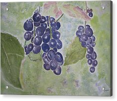 Fruits Of The Wine Acrylic Print by Elvira Ingram