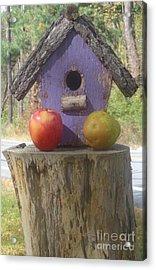 Fruity Home? Acrylic Print by Christina Verdgeline