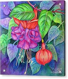 Fuchsia Acrylic Print by Dion Dior
