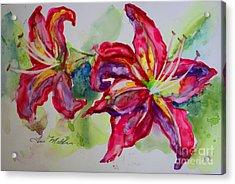 Fuchsia Lilies Acrylic Print by Terri Maddin-Miller