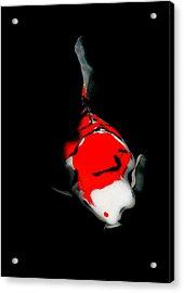 Fukushima1 Acrylic Print