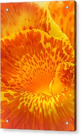 Full Color Canna Acrylic Print