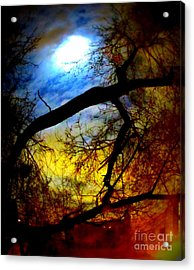 Full Crow Moon Acrylic Print by Maria Scarfone
