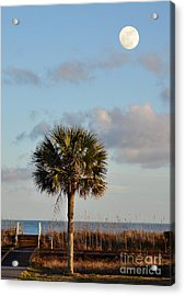 Full Moon At Myrtle Beach State Park Acrylic Print by Kathy Baccari
