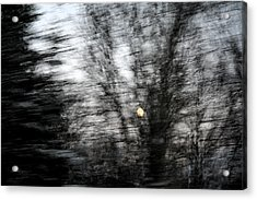 Full Moon Behind Trees Acrylic Print by Carolyn Reinhart