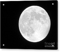 Full Moon Acrylic Print by Gayle Melges