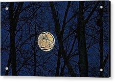 Full Moon March 15 2014 Acrylic Print