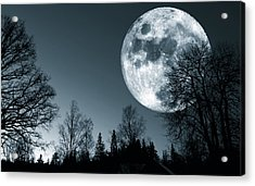 Full Moon Over Dark Forest Acrylic Print