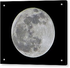 Full Moon Over Florida Acrylic Print by Tim Townsend
