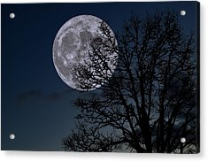 Acrylic Print featuring the photograph Full Moon Rising by Dennis Bucklin