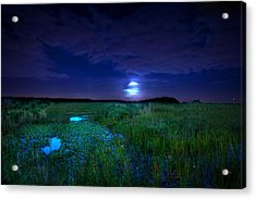Full Moons And Fireflies Acrylic Print by Mark Andrew Thomas