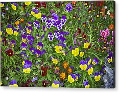 Full Of Flowers Acrylic Print