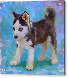 Acrylic Print featuring the painting Alaskan Husky Sled Dog Puppy by Karen Whitworth