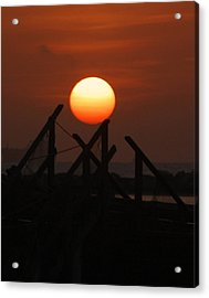 Acrylic Print featuring the photograph Full Sun by Leticia Latocki