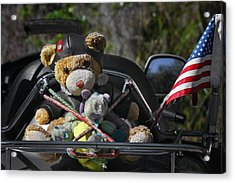 Full Throttle Teddy Bear Acrylic Print by Christine Till